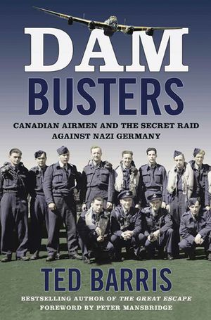 Dam Busters book image