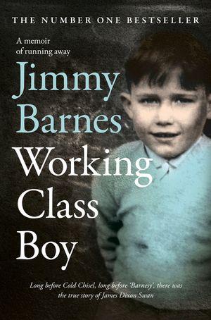 Working Class Boy book image