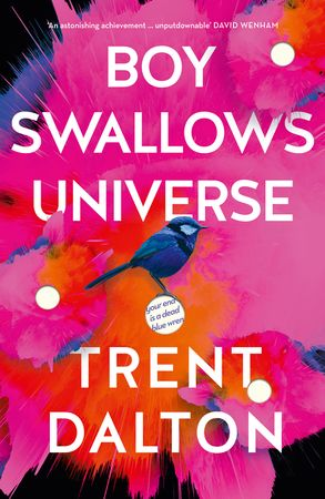 Cover image - Boy Swallows Universe