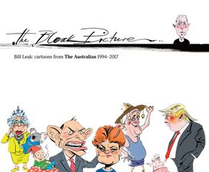 Cover image - The Bleak Picture