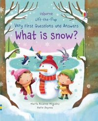lift-the-flap-very-first-questions-and-answers-what-is-snow