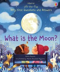 lift-the-flap-very-first-questions-and-answers-what-is-the-moon-board-book
