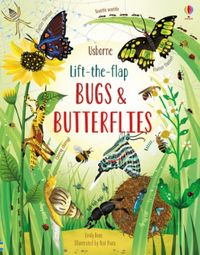lift-the-flap-bugs-and-butterflies
