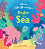 Little Lift and Look Under the Sea Paperback  by Anna Milbourne
