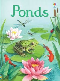 young-beginners-ponds