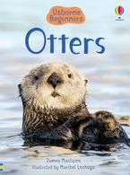 Beginners: Otters Hardcover  by James Maclaine