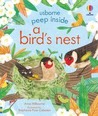 peep-inside-a-birds-nest