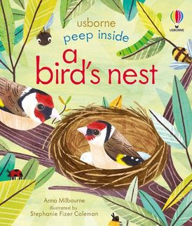 Peep Inside a Bird's Nest