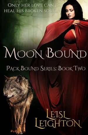 Moon Bound book image