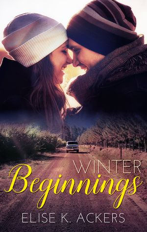 Winter Beginnings book image