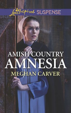Image result for amish country amnesia