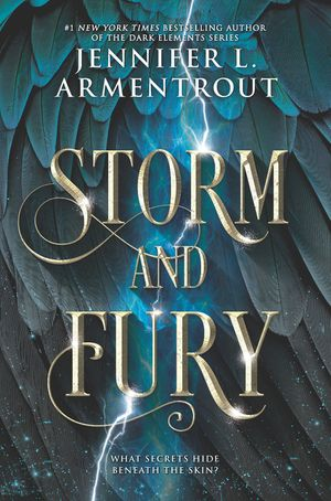 Storm and Fury book image