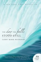 The Day The Falls Stood Still Paperback  by Cathy Marie Buchanan
