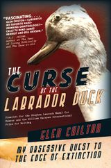 The Curse Of The Labrador Duck