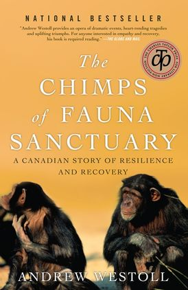 Chimps Of Fauna Sanctuary