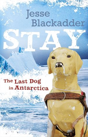 Stay book image