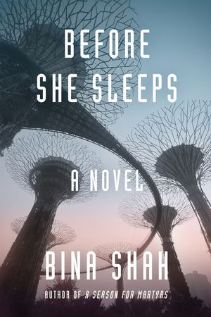 Before She Sleeps book image
