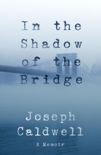 in-the-shadow-of-the-bridge
