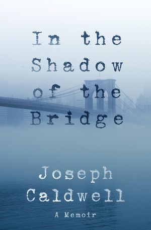 In the Shadow of the Bridge book image