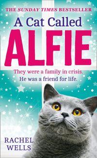 a-cat-called-alfie