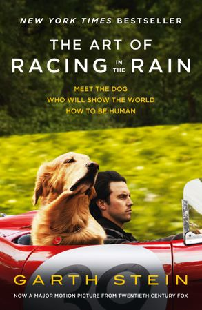 Cover image - The Art Of Racing In The Rain [Film Tie-In]