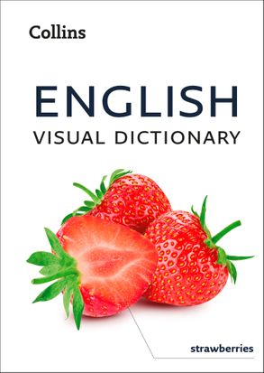 Cover image - English Visual Dictionary