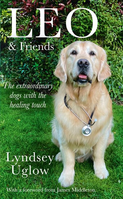 Leo and Friends: The Dogs with a Healing Touch