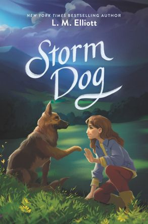 Cover image - Storm Dog