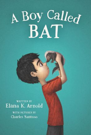 Cover image - A Boy Called Bat