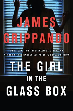 Cover image - The Girl In The Glass Box