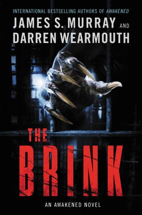 Cover image - The Brink: An Awakened Novel