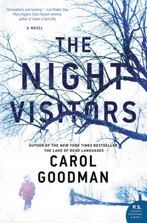 Cover image - The Night Visitors: A Novel