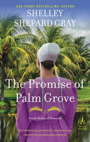 Cover image - The Promise Of Palm Grove