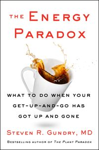 the-energy-paradox