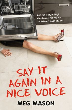 Cover image - Say It Again in a Nice Voice