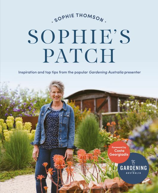Sophie S Patch Inspiration And Practical Ideas From The Popular