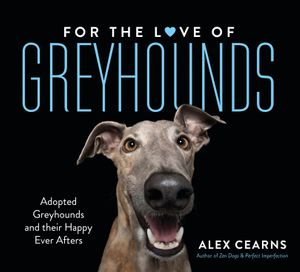 for-the-love-of-greyhounds-adopted-greyhounds-and-their-happy-ever-afters