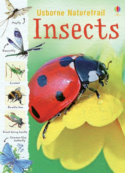 Naturetrail Insects