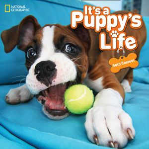 Picture of It's a Puppy's Life