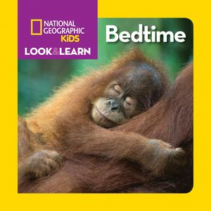 Picture of Look and Learn: Bedtime