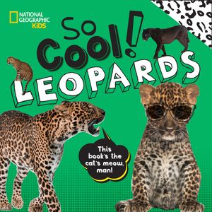 Picture of So Cool! Leopards