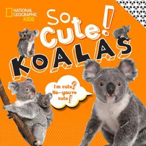 Picture of So Cute! Koalas
