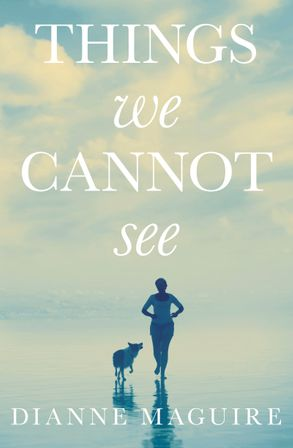 Cover image - Things We Cannot See