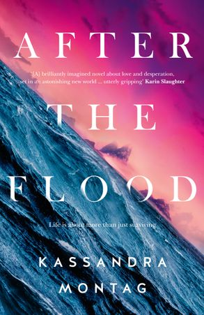 Cover image - After The Flood