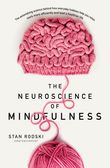 the-neuroscience-of-mindfulness-the-astonishing-science-behind-how-everyday-hobbies-help-you-relax