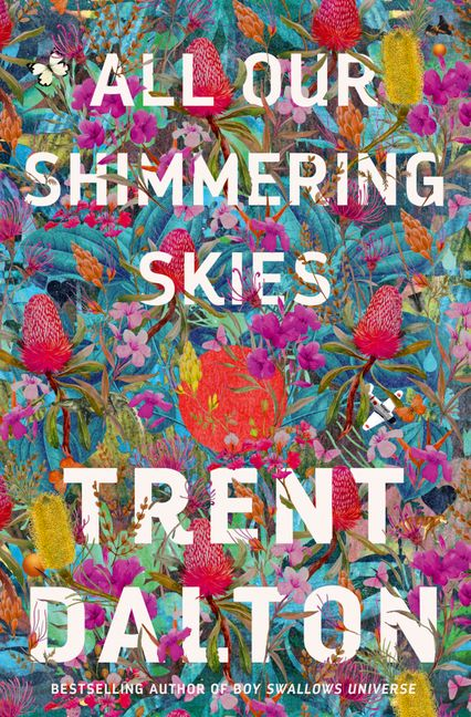 Image result for all our shimmering skies trent dalton book cover""