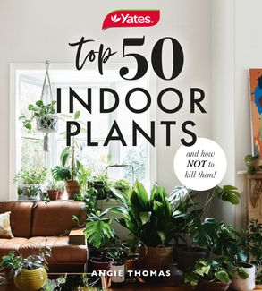 Cover image - Yates Top 50 Indoor Plants And How Not To Kill Them!