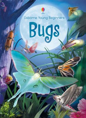 Cover image - Young Beginners Bugs