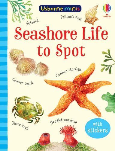 Mini Books Seashore Life to Spot