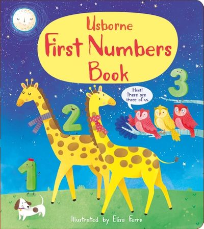 First Numbers Book